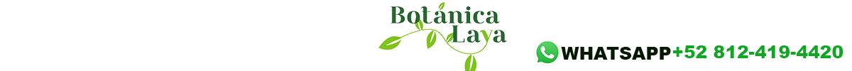 botanica-laya